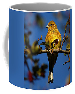 Yellowhammer Coffee Mug
