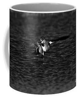 American Avocet Dance  Coffee Mug