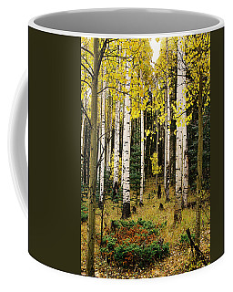 Aspen Grove In Upper Red River Valley Coffee Mug