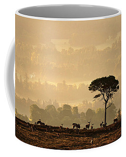 Autumn Morning, Strathglass Coffee Mug