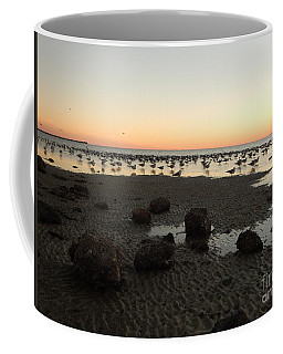 Beach Rocks Barnacles And Birds Coffee Mug by Expressionistart studio Priscilla Batzell