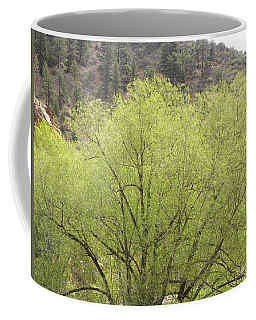 Coffee Mug featuring the photograph Tree Ute Pass Hwy 24 Cos Co by Margarethe Binkley