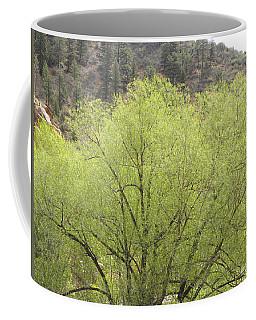 Tree Ute Pass Hwy 24 Cos Co Coffee Mug