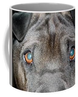 Gandalfs Eyes Coffee Mug