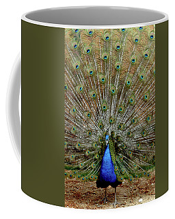 Coffee Mug featuring the photograph  Iridescent Blue-green Plumage by LeeAnn McLaneGoetz McLaneGoetzStudioLLCcom