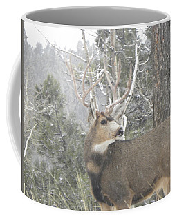 Buck Front Yard Divide Co Coffee Mug