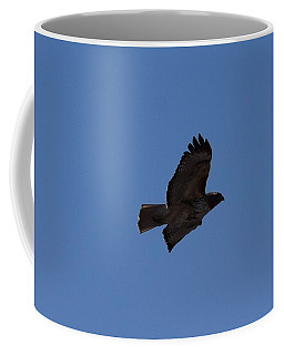Coffee Mug featuring the photograph Red Tail Hawk Male Tower Rd Denver Co 0898 by Margarethe Binkley