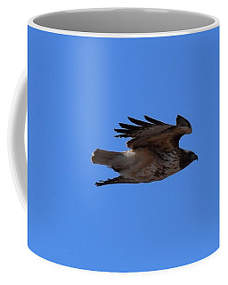 Coffee Mug featuring the photograph Red Tail Hawk Male Tower Rd Denver by Margarethe Binkley