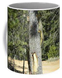 Squirrel Home Divide Co Coffee Mug
