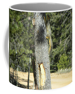 Squirrel Home Divide Co Coffee Mug