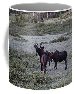 Moose Cameron Pass Co Coffee Mug