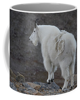 Coffee Mug featuring the photograph Mountain Goat Mnt Evans Co  by Margarethe Binkley