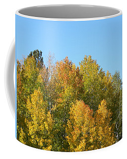Coffee Mug featuring the photograph Fall In Divide Co by Margarethe Binkley