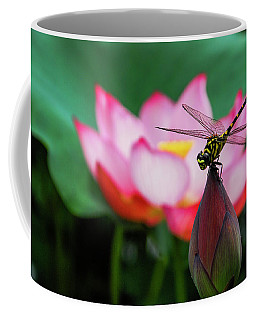 A Dragonfly On Lotus Flower Coffee Mug