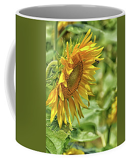 A Sunny Day Coffee Mug