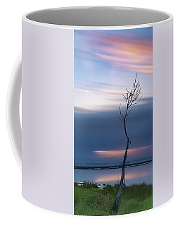 Coffee Mug featuring the photograph A Tree  by Bruno Rosa