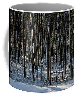 A Walk In The Woods Coffee Mug by Tricia Marchlik