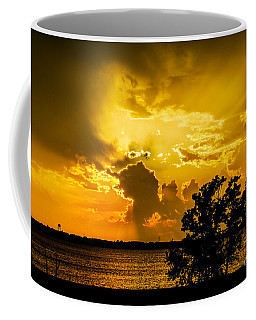Coffee Mug featuring the photograph After The Storm by Betty LaRue