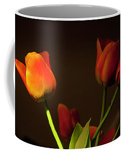 Coffee Mug featuring the photograph Afternoon Light by KG Thienemann