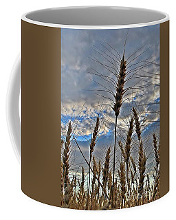 Coffee Mug featuring the photograph All About Wheat by Sara Raber