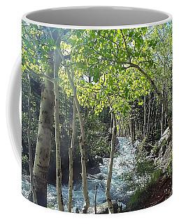 Along Alberta Falls Trail Rocky Mountain National Park Coffee Mug