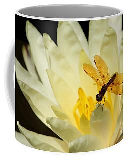 Amber Dragonfly Dancer 2 Coffee Mug