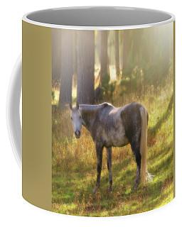Ambient Grace Coffee Mug