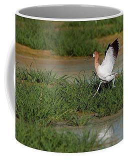 American Avocet Coffee Mug by Tam Ryan