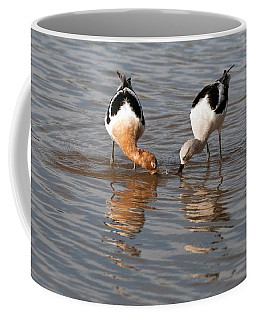 Coffee Mug featuring the photograph American Avocets by Tam Ryan