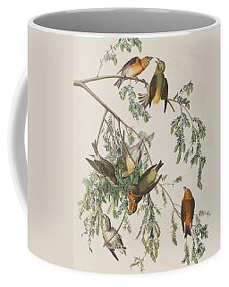American Crossbill Coffee Mug