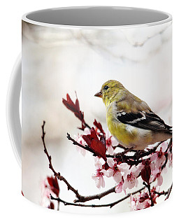 American Goldfinch In Spring Coffee Mug by Trina Ansel