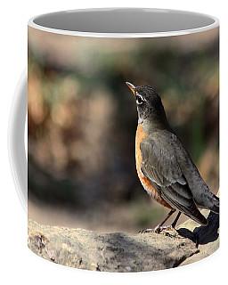 American Robin On Rock Coffee Mug