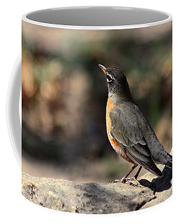 American Robin On Rock Coffee Mug