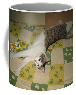 Ammani The Cat Coffee Mug