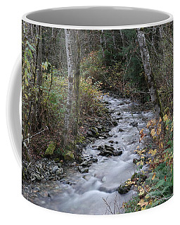 Coffee Mug featuring the photograph An Autumn Stream by Jeff Swan