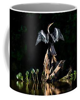 Anhinga Anhinga Anhinga, Pantanal Coffee Mug