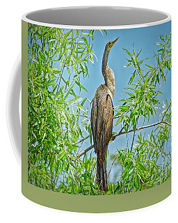 Anhinga Branching Out Coffee Mug by Judy Kay