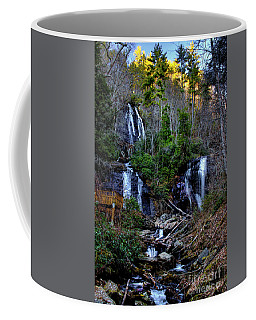 Anna Ruby Falls Coffee Mug by Barbara Bowen