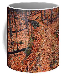Appalachian Trail In Ny Coffee Mug by Raymond Salani III