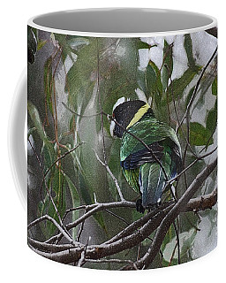 Australian Ringneck I Coffee Mug