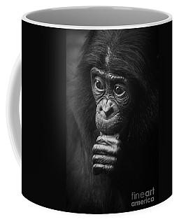 Coffee Mug featuring the photograph Baby Bonobo Portrait by Helga Koehrer-Wagner