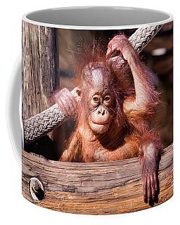 Baby Orangutan Coffee Mug by Stephanie Hayes