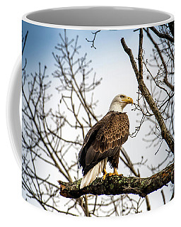 Bald Eagle Majesty Coffee Mug