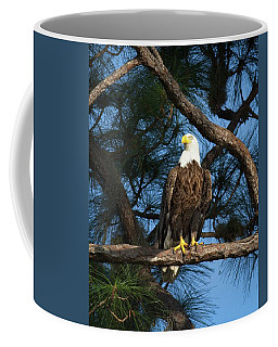 Bald Eagle Near Nest Coffee Mug
