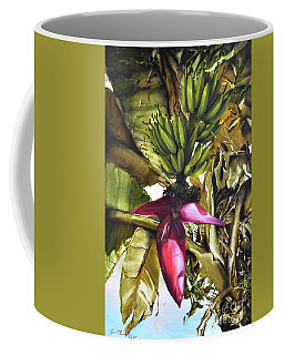 Banana Tree Coffee Mug by Chonkhet Phanwichien