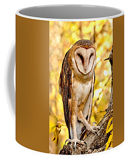Barn Owl Coffee Mug by Amy McDaniel