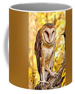Coffee Mug featuring the photograph Barn Owl by Amy McDaniel