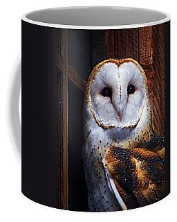 Barn Owl  Coffee Mug