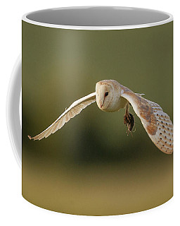 Barn Owl Coffee Mug