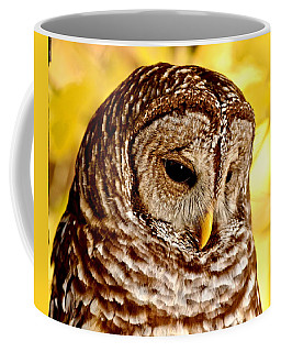 Coffee Mug featuring the photograph Barred Owl by Amy McDaniel